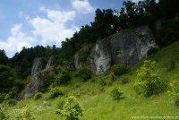 Dolina Kobylańska - wapienie