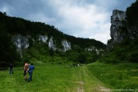 Dolina Kobylańska - wąwóz