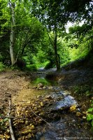 Dolina Kobylańska - Kobylanka