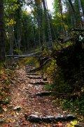 Ojcowski Park Narodowy czarny szlak
