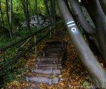 Ojcowski Park Narodowy zielony szlak