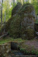 Dolina Sąspowska ruiny