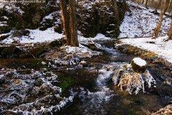 Dolina Będkowska potok