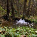 Potok Sanka w Dolinie Mnikowskiej