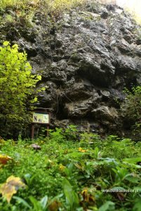 Skała z Nyżą - w dolinie Racławki