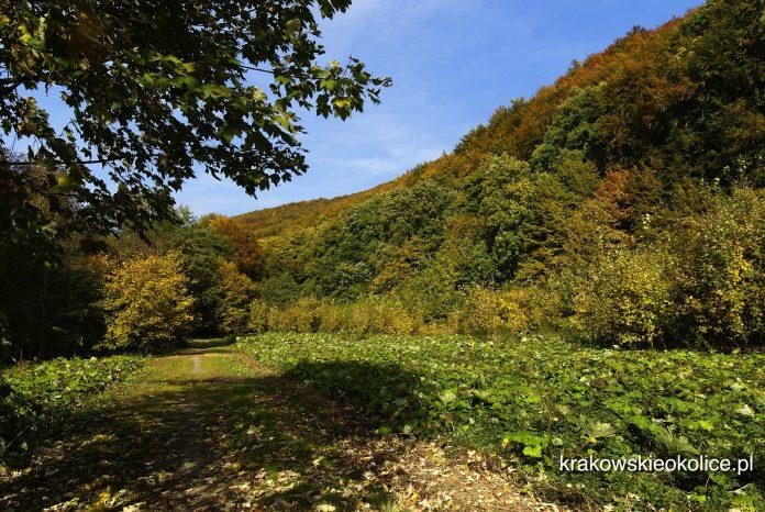 wejście do Doliny Racławki